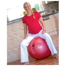 Ballon Gymnastique Swiss Ball